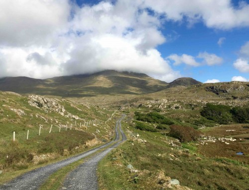Top 3 best cycling routes in Ireland as voted by our 2019 customer community