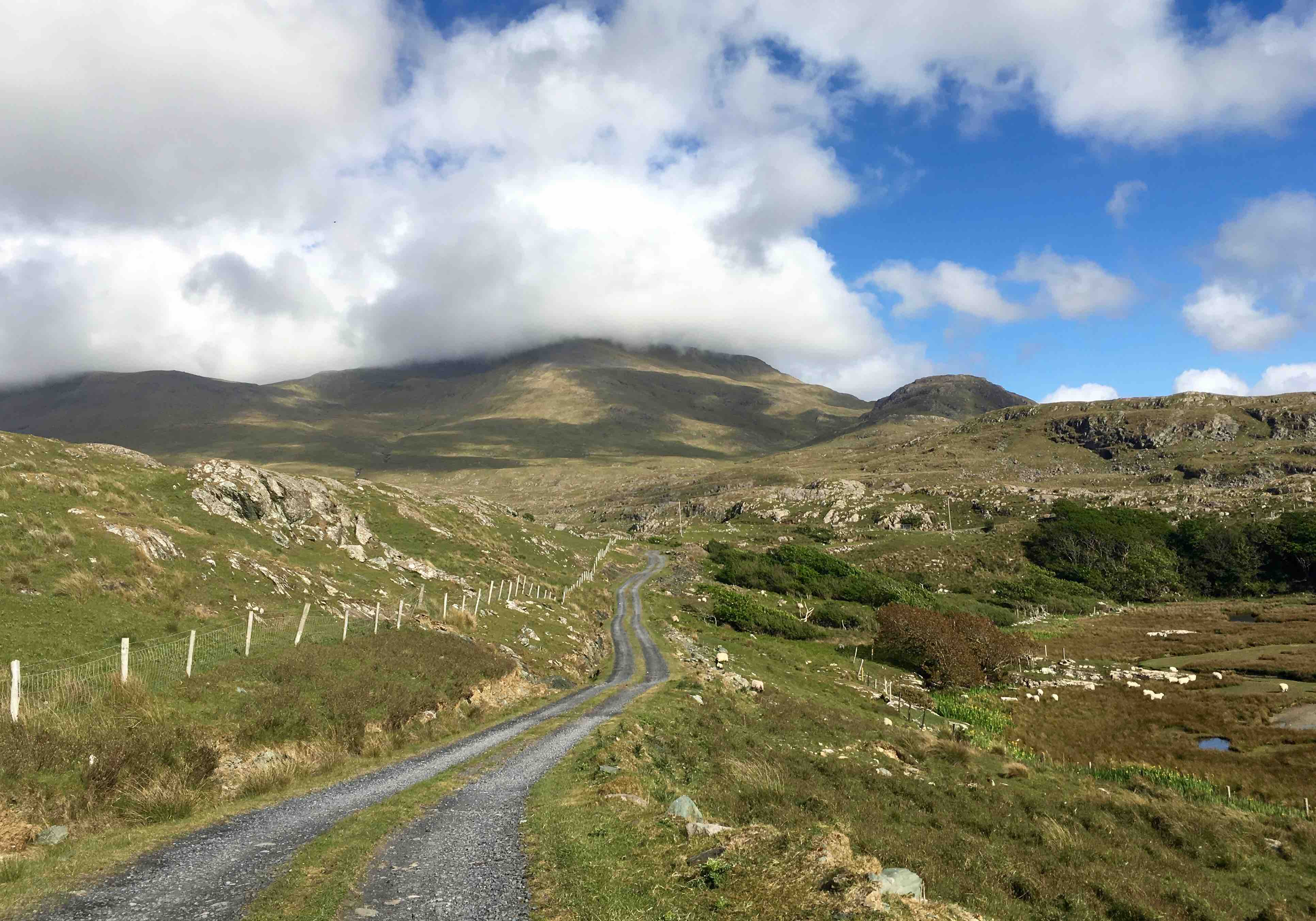 Cycling holiday in Connemara
